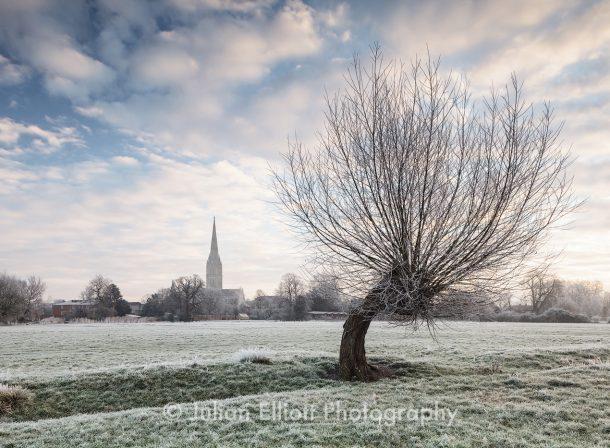 Salisbury cathedral at dawn