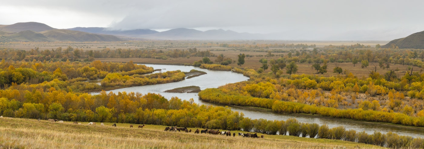 Onon-Balj National Park in Mongolia.